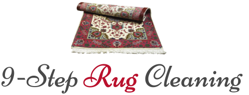 9-step RUG CLEANING