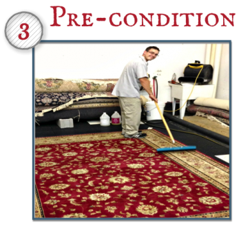 Depending on fiber content and soiling type, the rug will be pre-treated to emulsify the soils.